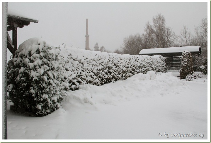 Winter in Puschwitz, 11.12.12, 16:11 © by whippethoney